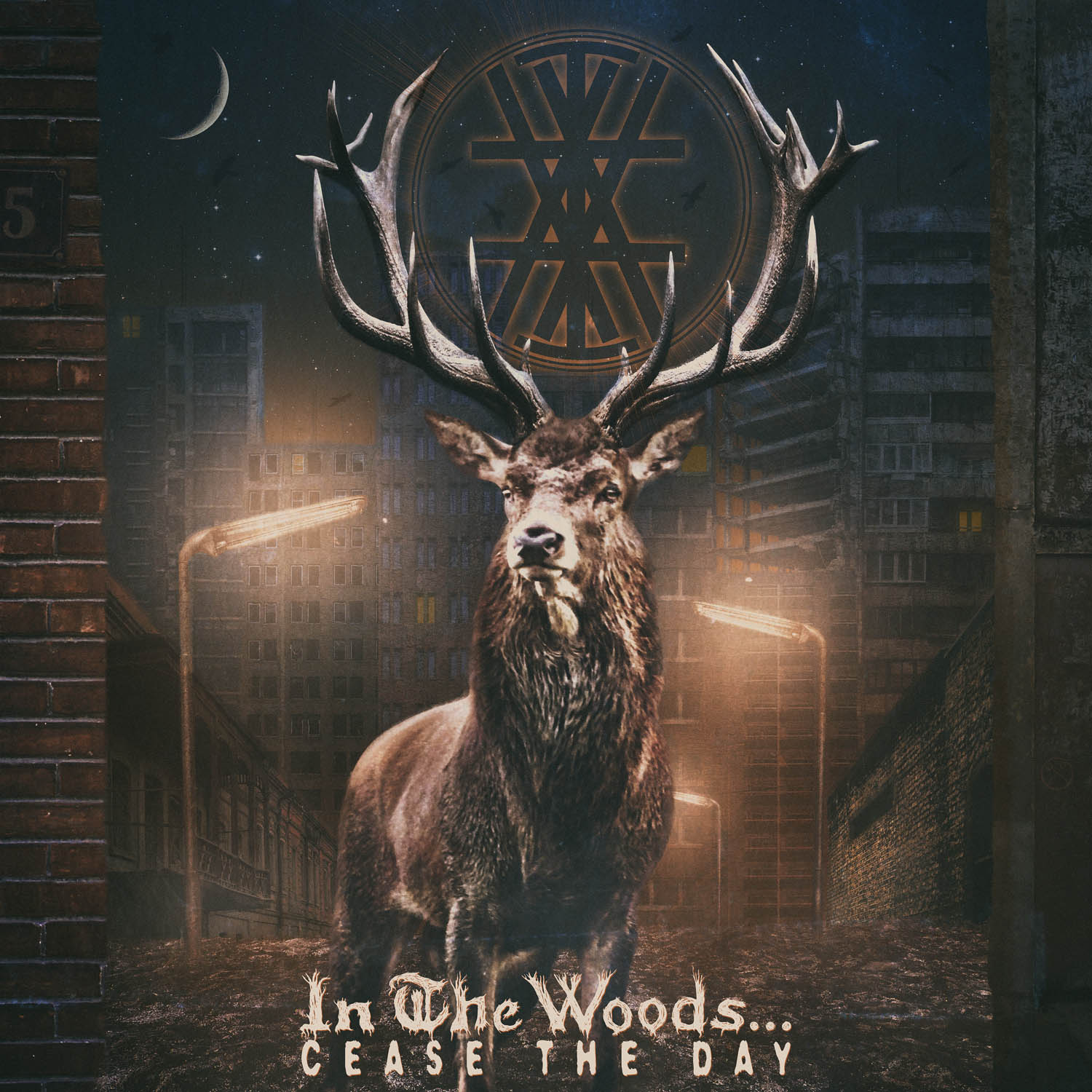In The Woods Cease The Day Review
